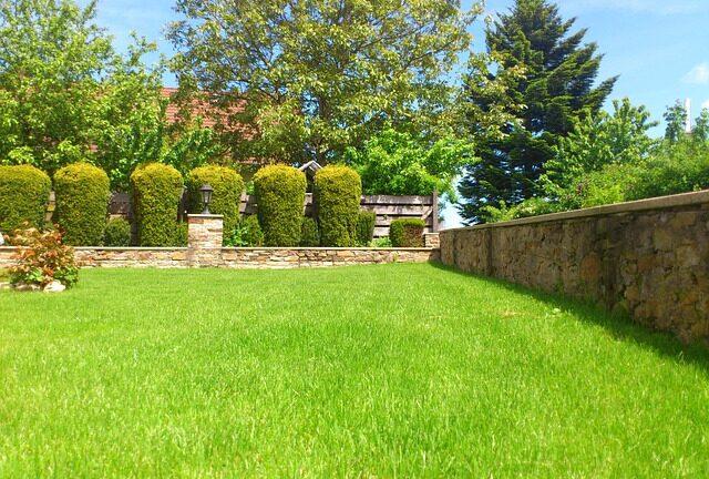 Poprawne używanie podkaszarki do trawy i chwastów