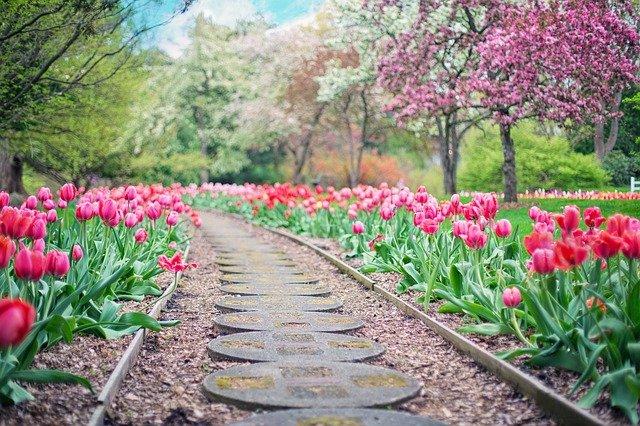 Wiosenny niezbędnik ogrodnika – zestaw podstawowych narzędzi i akcesoriów do pracy w ogrodzie